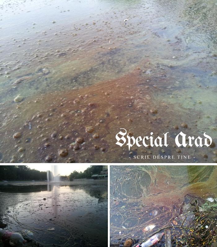 lacul de la padurice bleax