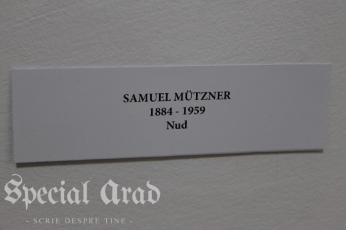 noaptea muzeelor 2016 (77)