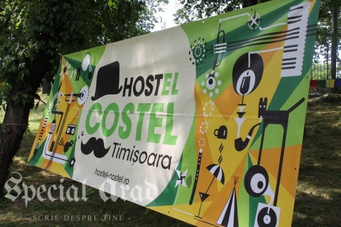 street delivery 2016 timisoara (139)
