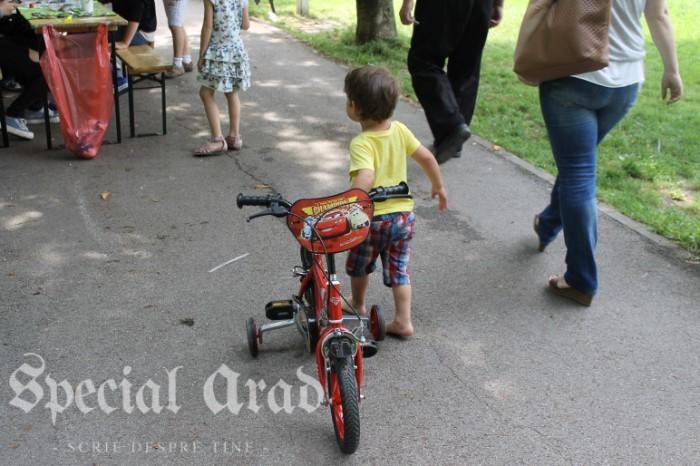 street delivery 2016 timisoara (162)