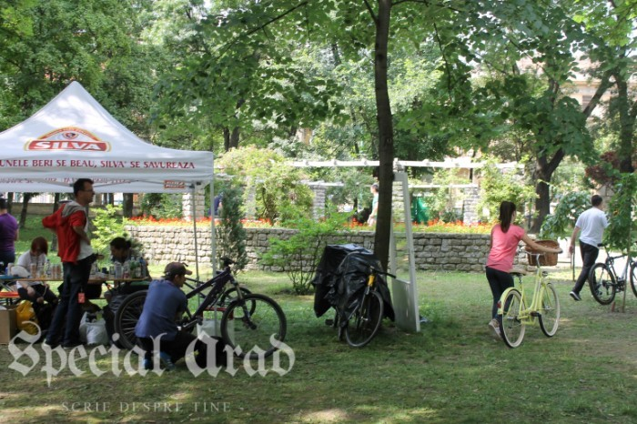 street delivery 2016 timisoara (64)