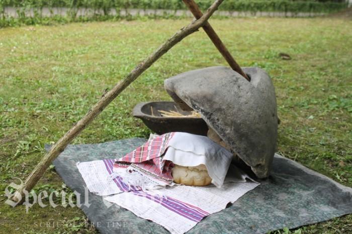 street delivery 2016 timisoara (81)