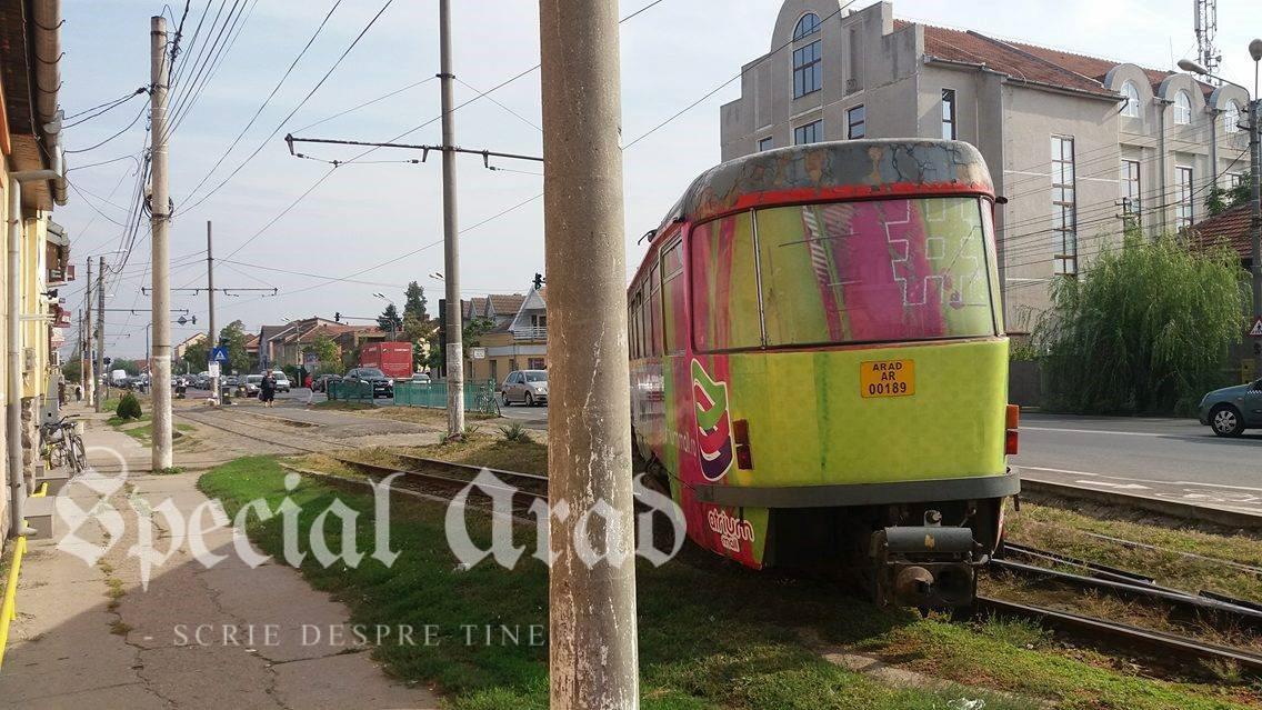 tram-deraiat-gradiste-3