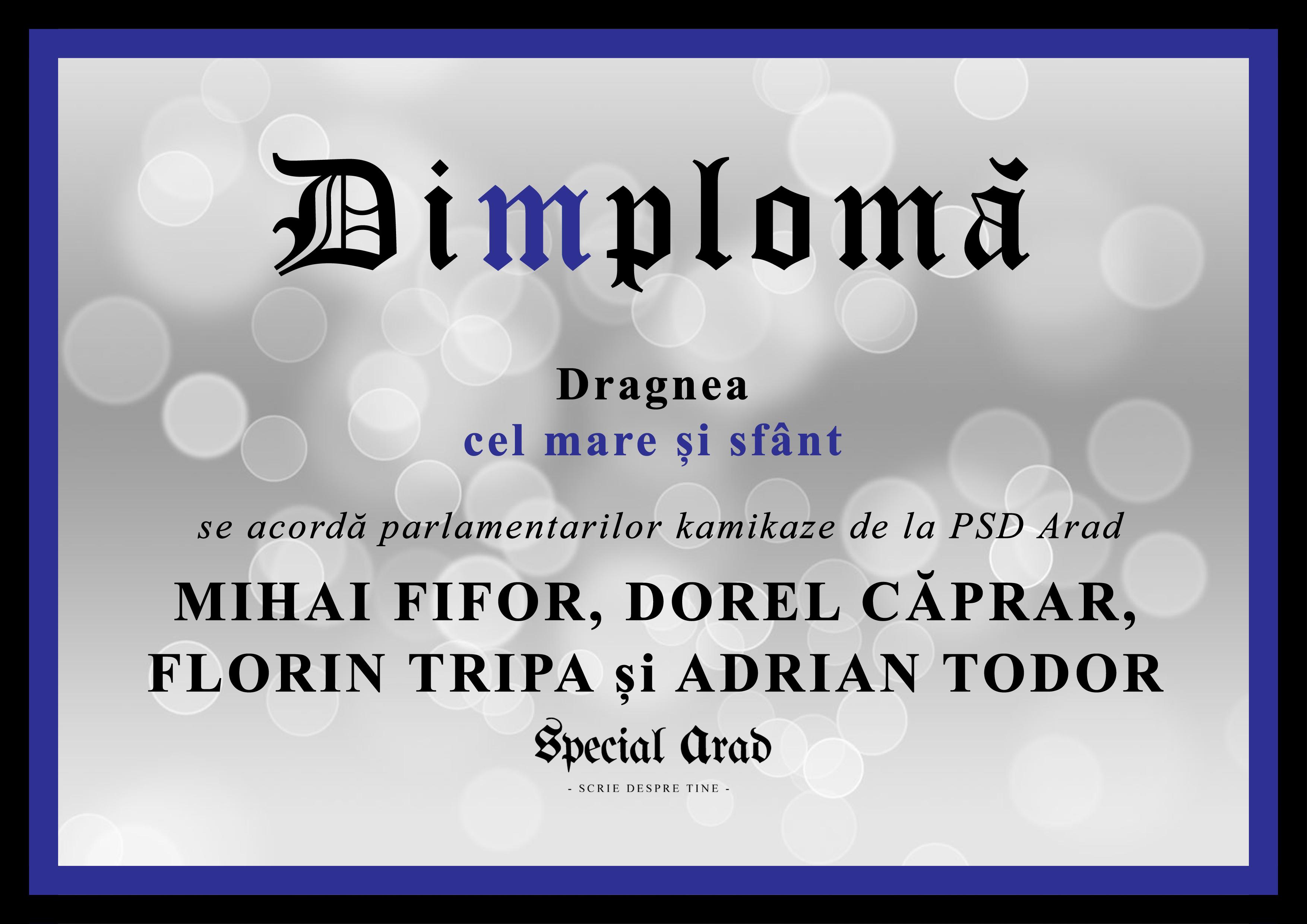 dimploma-dragnea-cel-mare-si-sfant