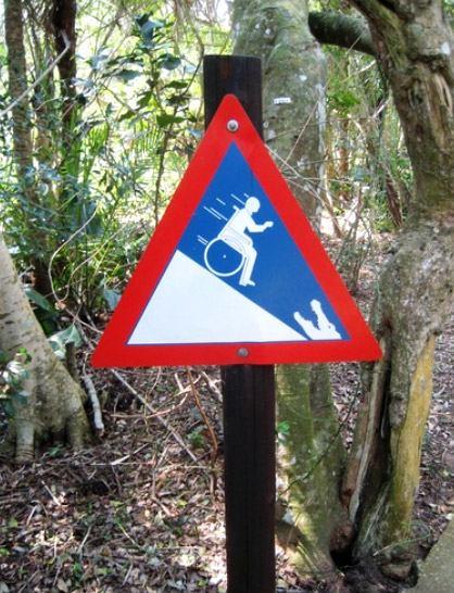 wheelchair-crocodile