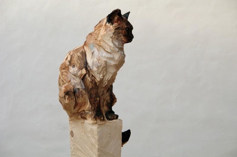 cat_side
