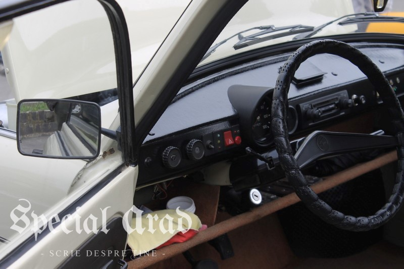 masini retro la Arad 2017 (100)