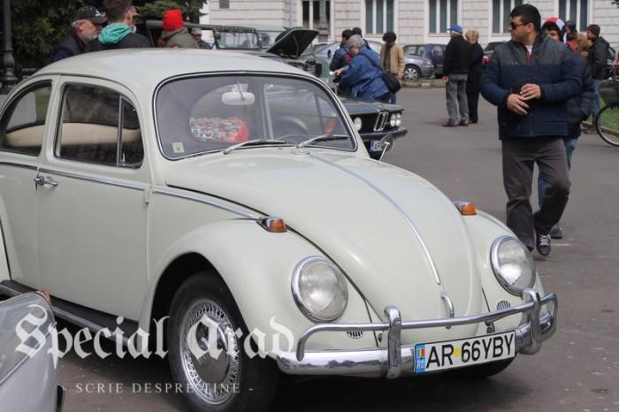 masini retro la Arad 2017 (8)