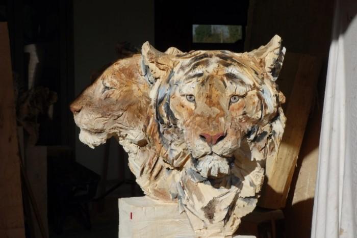tigru-990x660