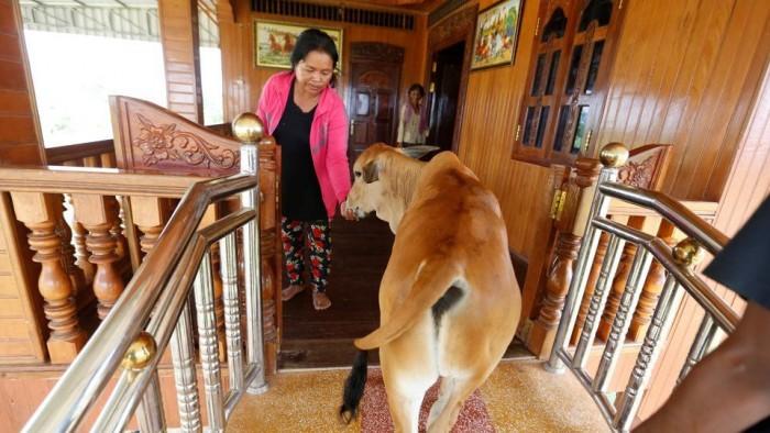 family-kratie-province-reborn-patriarch-cambodia-believes_dfe760dc-6dd6-11e7-90b5-ba41537c464e