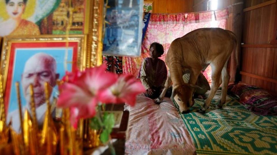 reborn-husband-kratie-province-cambodia-believes-bedroom_8d67b2a8-6dd6-11e7-90b5-ba41537c464e