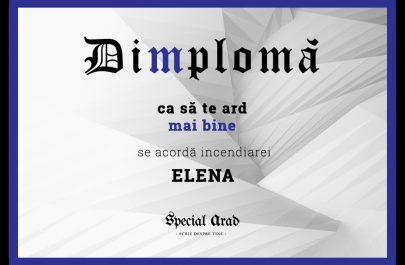 DIMPLOMA ELENA