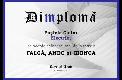 DIMPLOMA FALCĂ, ANDO și CIONCA