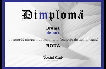 DIMPLOMA ROUA
