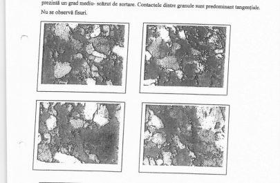 raport incercari constructor 18.09-2