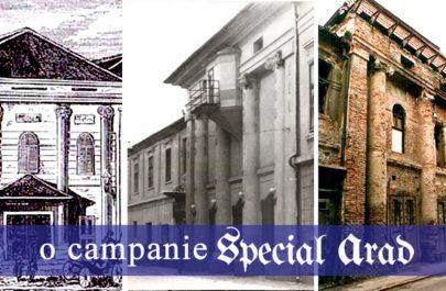 campanie-special-arad-teatru-vechi