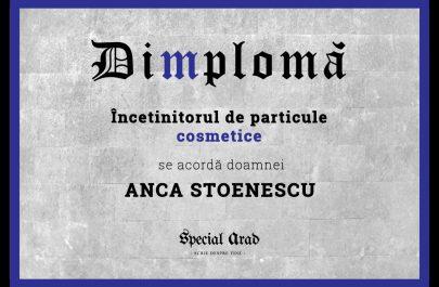 DIMPLOMA ANCA STOENESCU