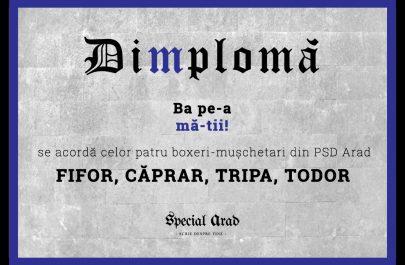 DIMPLOMA FIFOR CĂPRAR TRIPA TODOR