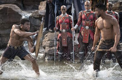 Wakanda fight