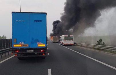 autobuz ars 3
