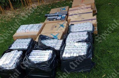 tigari confiscate2