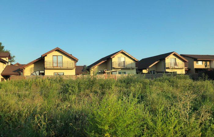 Romana Residence Arad, sau casa care îți provoacă alergie... Pădurea de ambrozie de lângă locuința pe care ai visat-o