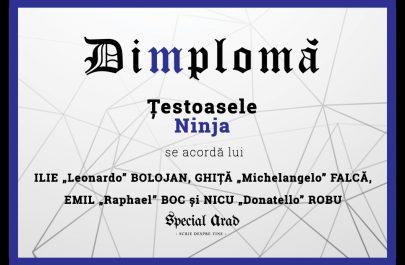 DIMPLOMA Țestoasele Ninja AVE