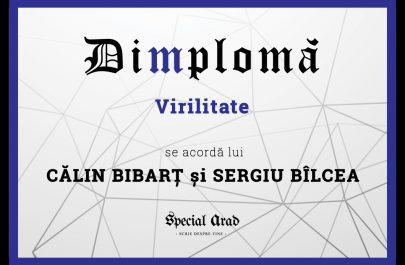 DIMPLOMA CĂLIN BIBARȚ și SERGIU BÎLCEA