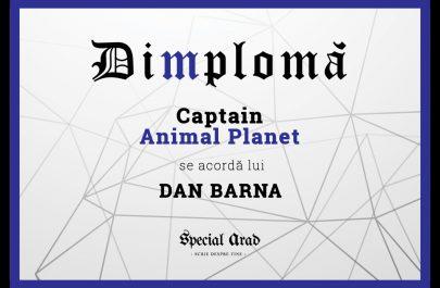 DIMPLOMA DAN BARNA