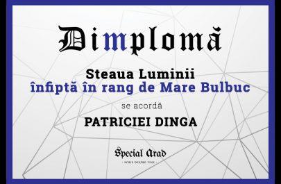 DIMPLOMA PATRICIEI DINGA