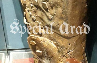 butucul de fier muzeul arad