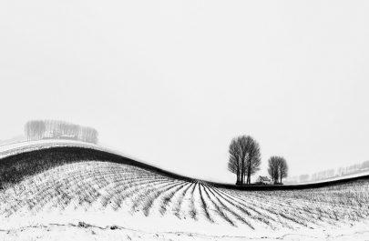 FCA 1 - Lybaert Daniel - Glooiend landschap